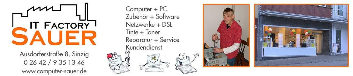 stat-sauer-computer