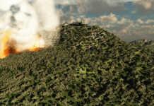Erhöhte Waldbrandgefahr durch trockenes Wetter