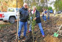 Aktivgemeinschaft pflanzt Ehrenbaum für Benno Schneider
