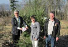 Wiederholte anonyme Spende für den Sinziger Stadtwald