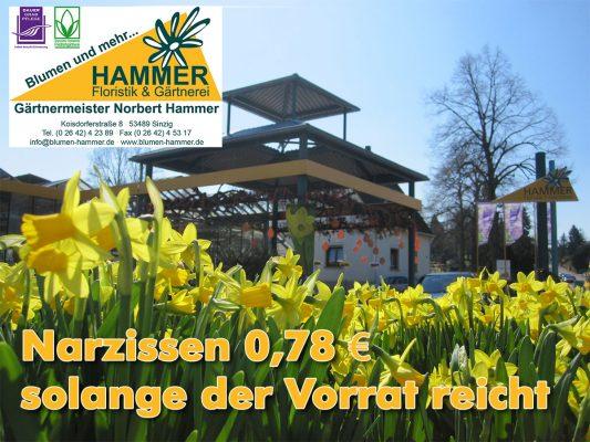 Blumen Hammer