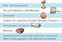 Essensreste gehören in die Biotonne - gerade im Sommer