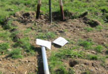 Vandalismus auf dem Sinziger Mühlenberg