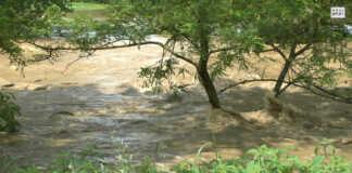 Hochwasser-App für AW-Kreis