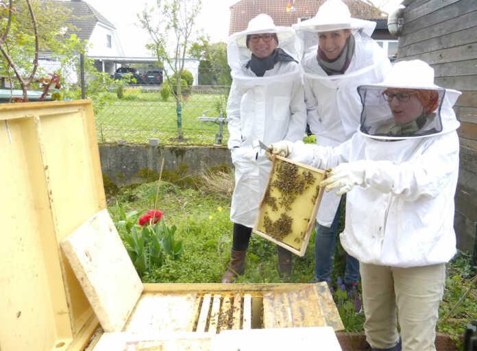 Bienenvölker waren im kalten April weniger aktiv
