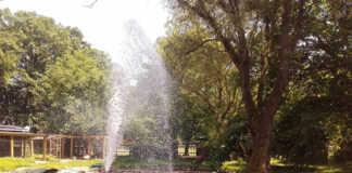 Feuerwehr füllt Schwanenteich in Bad Bodendorf auf