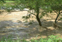 Erstellung eines Hochwasserschutzkonzept