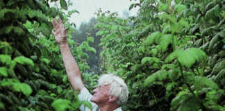 Zur Apfelernte zurück in Ervens Paradies - Wanderung in Ervens Paradies