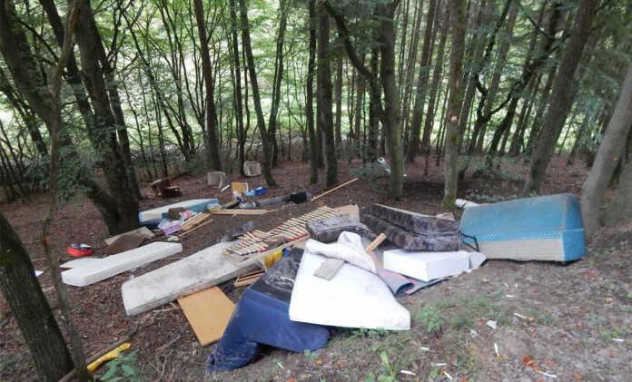 Illegale Sperrmüllentsorgung im Wald