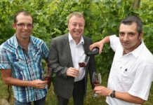 Freuen sich auf den Dankabend des Ehrenamtes: Christian Bertram (von links), Dr. Jürgen Pföhler und Markus Bertram