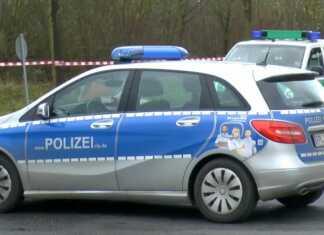 Schulbus musste scharf bremsen - 10 Schulkinder leicht verletzt
