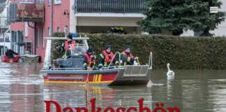 Hochwasser am Rhein 2018