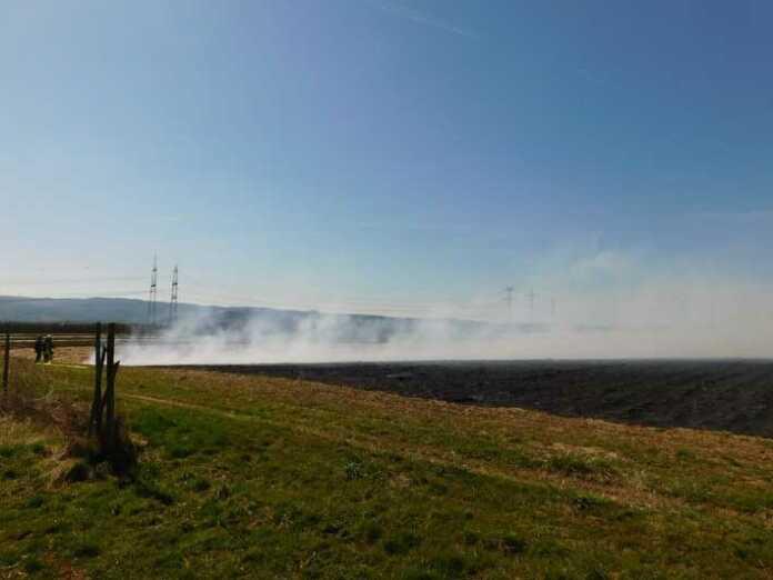Grafschaft-Oeverich: Brand eines Erdbeerfeldes