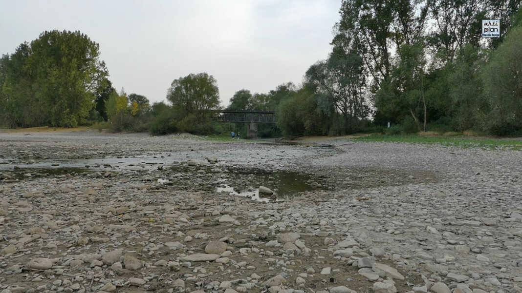 Niedrigwasser / Hochwasser in Sinzig Kripp Remagen Oberwinter Rolandseck - der Film