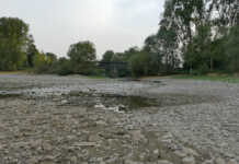 Niedrigwasser / Hochwasser in Sinzig Kripp Remagen Oberwinter Rolandseck - der Film