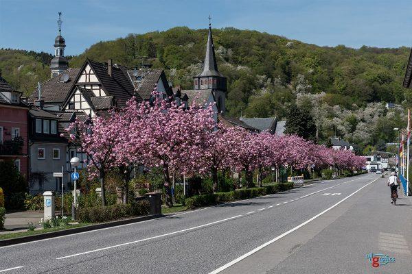Dreck-Weg-Tag 2019 in Oberwinter @ Marktplatz Oberwinter | Remagen | Rheinland-Pfalz | Deutschland