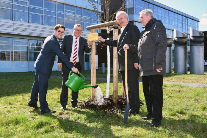 Ein Baum für den Campus: Landrat übergibt Jubiläumsgeschenk an Hochschule Koblenz