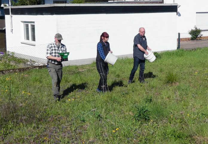 WGR-Mitglieder legen Blumenwiese in Unkelbach an