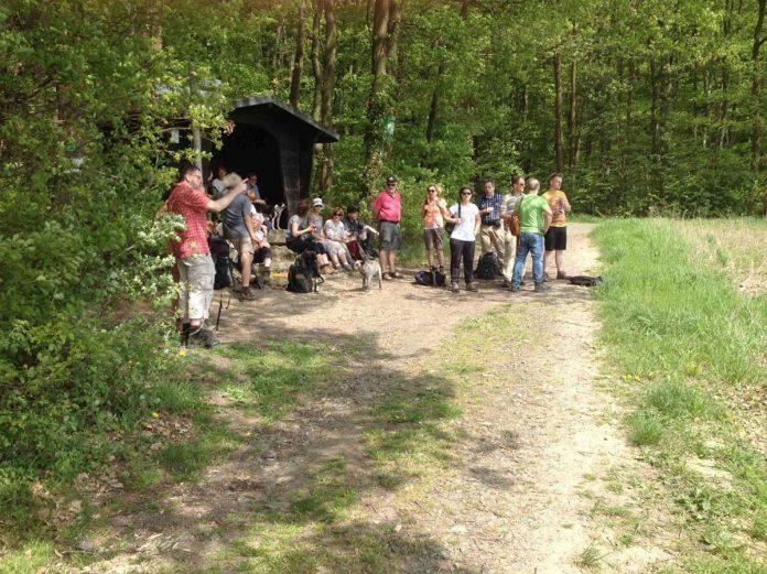 Wandern und Entdecken: Geologische Formen des Rheintals