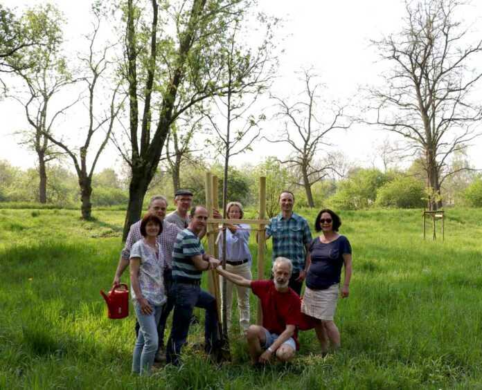 Bürgerforum Sinzig pflanzt Jahresbäume