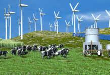 Kostenfreie Infogespräche zum Thema Klimaschutz