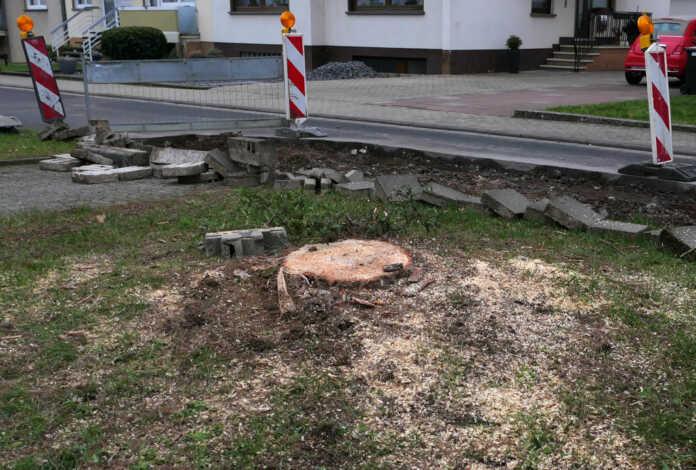 Die Stadtverwaltung Sinzig informiert