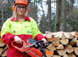 Versteigerung von Brennholz