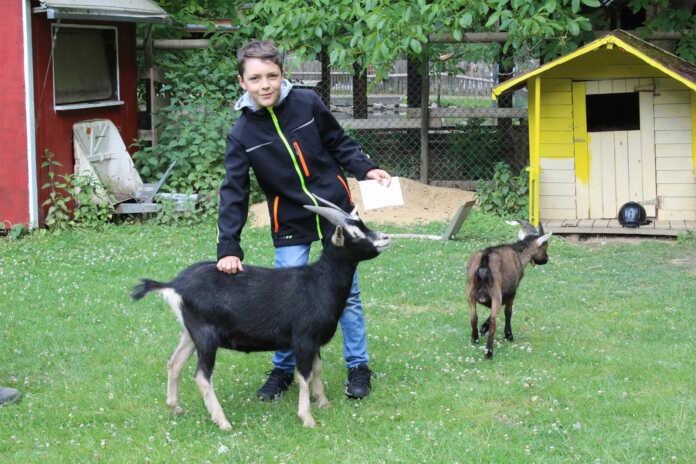Sinziger Gymnasiast spendet Geburtstagsgeld an Schwaneneich