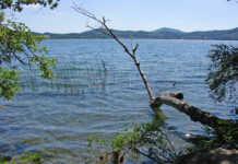 Laacher See lockt mit ausgezeichneter Wasserqualität