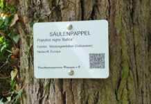 Baumbeschilderung erweitert