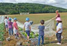 Ein Tag auf dem Bauernhof Wilhelmshof