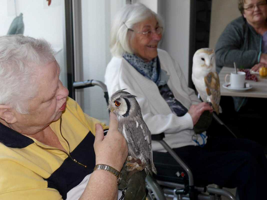 """Hospizgäste kuscheln mit Greifvögeln. """"Falkner der Herzen"""" beschert unvergessliche Momente"""